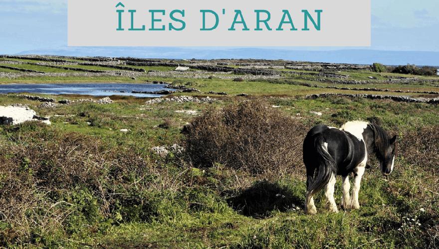 Guide Pratique : Visiter les îles d'Aran